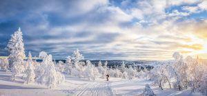 Langlaufen met zonsondergang in Zweden