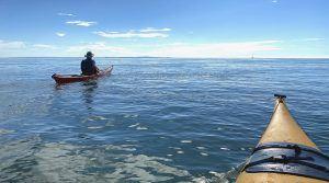 Wattenmeer-Kanuten auf dem Weg nach Terschelling